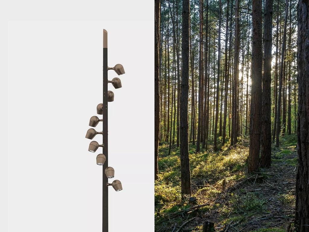 Olivio Wood lamper fra Selux på tremast